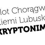 Ruszyła rekrutacja patroli na Zlot Chorągwi